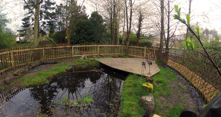 Epic Garden Pond