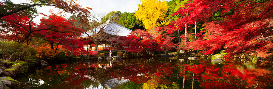 Lakeside temple in Kyoto surrouded by autumn leaves