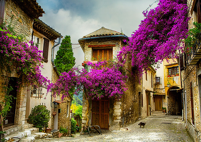 Quaint village in Provence with cobbled streets and flowers