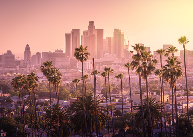 Los Angeles Cityscape with Palm Trees in the Foreground