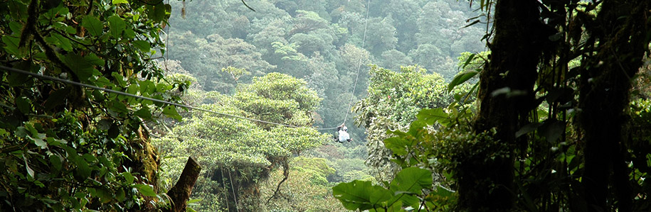 Zip Lining Through the Jungle Canopy in Costa Rica